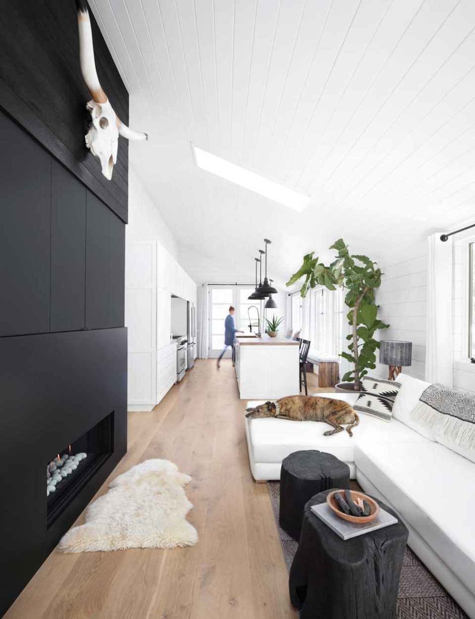 How To Furnish House With Modern Furniture: How To Furnish A Narrow Living Room