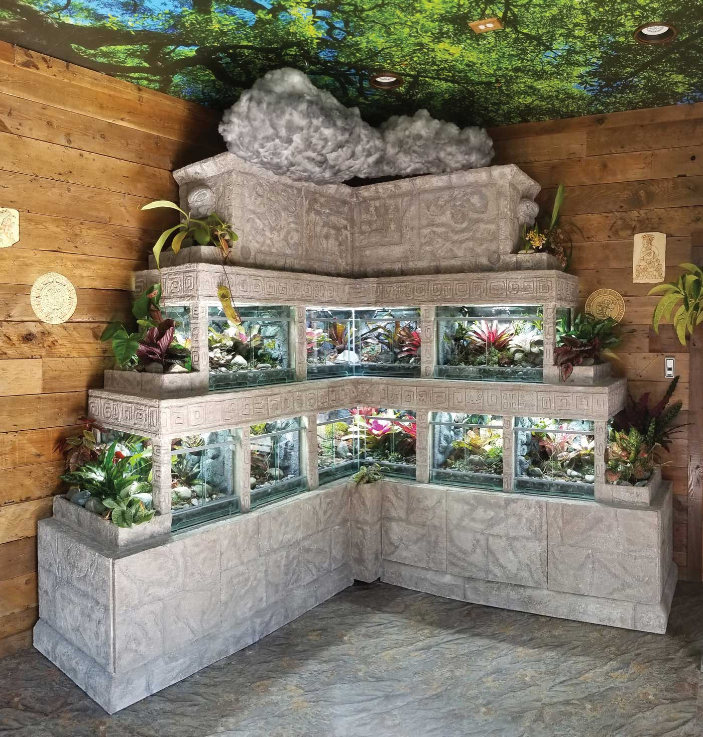 This Calgary Terrarium Company Builds Stunning Large