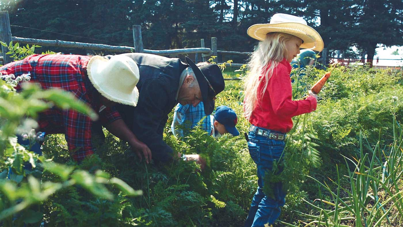 7 Events to Check Out During Alberta Open Farm Days