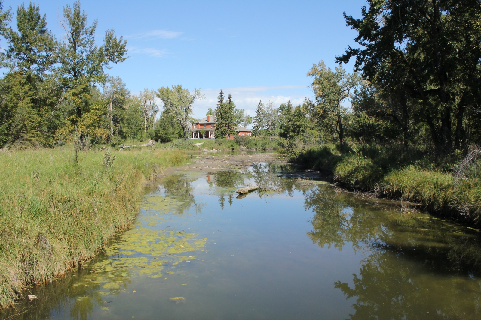 The Inglewood Bird Sanctuary is open to the public year round and currently has two trails reopened since the 2013 flood.